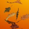 Осенний инвентарь: лучшие золотые и бронзовые скины